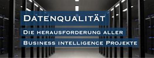 Datenqualität – die Herausforderung aller Business Intelligence Projekte